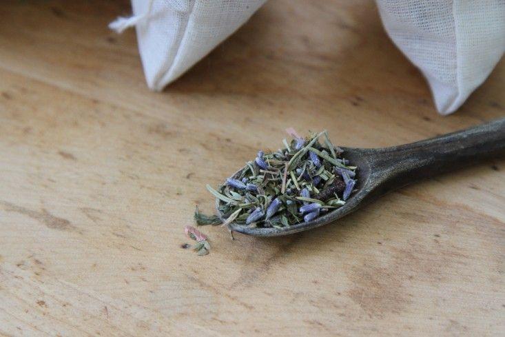 herbs-wooden-spoon-gardenista