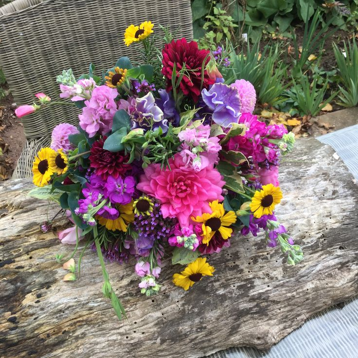 British flowers #Homegrown #Bright and Beautiful #Lovely scented bouquet #Dahlias #Sweet peas #Helenium #Cerinthe #Stocks # Verbena. All enquiries email:- Vick@bloominglovelyflowersandplants.co.uk