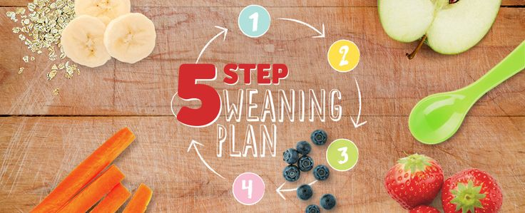 5 Step Weaning Plan from Cow and Gate, has loads of ideas for baby's first foods and on, I have this and it's brilliant.