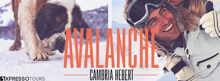 Fangirl Moments And My Two Cents @fgmamtc: Avalanche by Cambria Hebert Cover Reveal