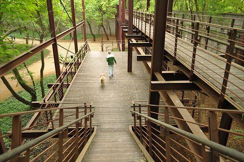 Parque da Juventude - São Paulo #parque #park