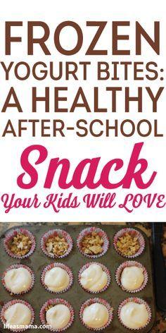 Frozen Yogurt Bites: A Healthy After-School Snack Your Kids Will Love