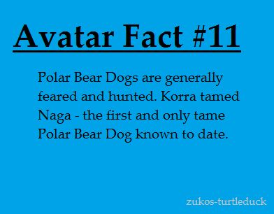 Because Korra is just that Badass