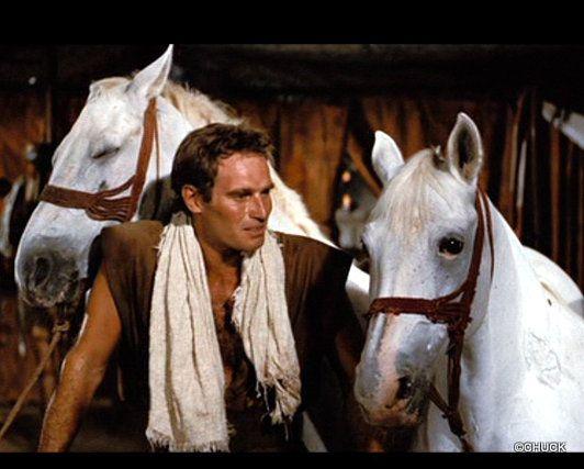 Ben-Hur Horses - Home | Facebook