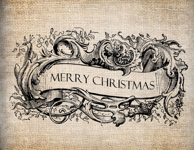 101 best Merry Christmas images on Pinterest | Merry christmas ...