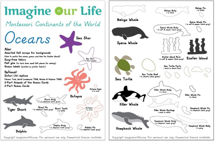 Animals of the Ocean for the Montessori Wall Map & Quietbook