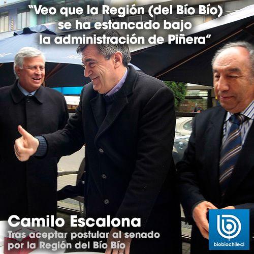 09/07/2013  http://www.biobiochile.cl/2013/07/09/camilo-escalona-confirma-candidatura-senatorial-costa-en-la-region-del-bio-bnio.shtml