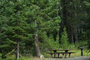 Photo: COLD SPRINGS CAMPGROUND - NEW MEADOWS