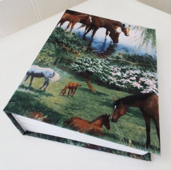 Grazing horse photo album 100 4x6 photos. by PeacefullyPerfect