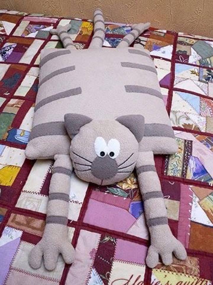 gato perezoso