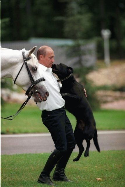 Путин В.В. - Koni's glad to see her Daddy.