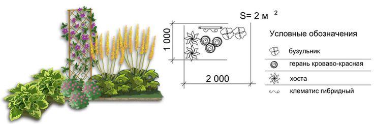 готовые схемы цветников и клумб для начинающих: 24 тыс изображений найдено в Яндекс.Картинках
