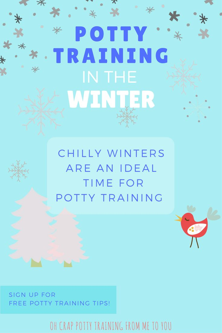 how to potty train your puppy in the winter