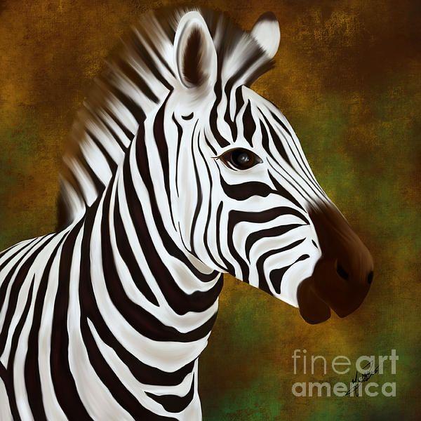 Zebra, digital painting down on ipad