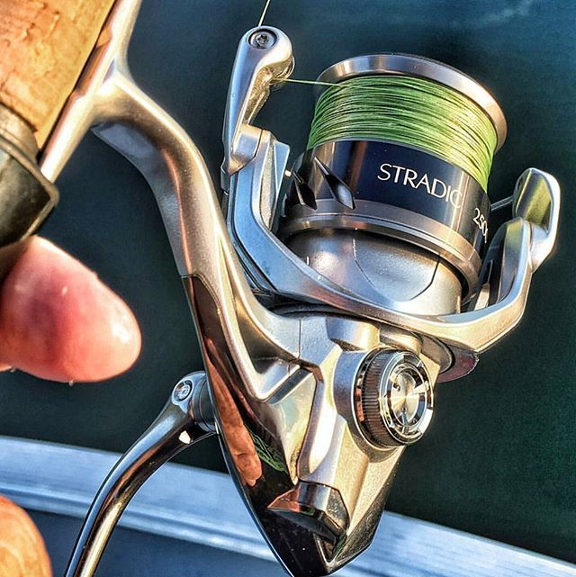 Weekend is almost here! Time to get the #stradicfk ready!   by @bobbomahoney