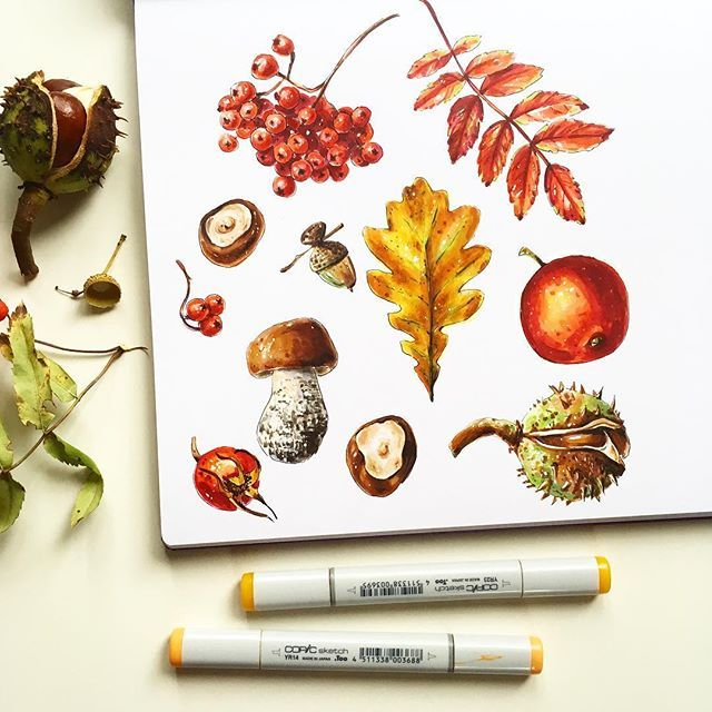More autumn things #copicmarkers #leuchtturm1917