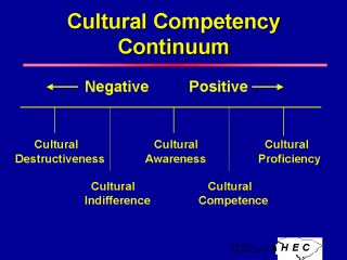 cultural differences causes and treatment of health and illness Culture and treatment  attributions of causes of mental illness to biological factors, and fear of a system not set up to deal well with cultural differences.