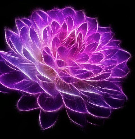 "Fractal - Fractal Art -  Flower Photography - Photography -  Home Decor - Purple - Surreal - 8 X 10"" Prints"