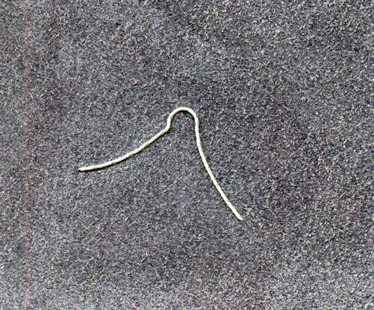 Note that the non-hook end of the hook (the shank, maybe?) doesn't have an eye - that's where the silk gut comes in!