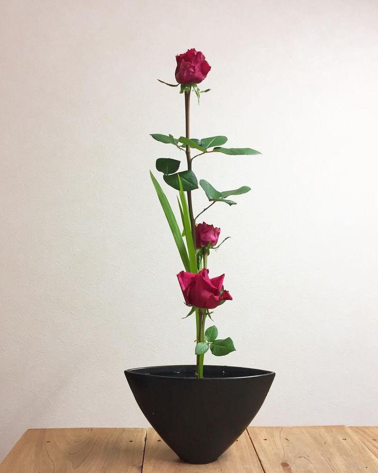 "286 Likes, 9 Comments - aiko (@aiko_kado) on Instagram: ""バラ&クロコスミア 花言葉バラは愛情、情熱、 クロコスミアは、楽しい思い出、炎の様にとありましたのでお似合いの二種かも〜〜✨✨ * #kadoh #ikebana #flower…"""