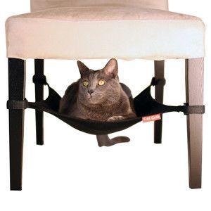 Cat hammock under kitchen chairs!