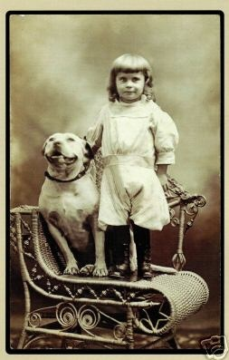 In the olden days pitbulls were used as nannys to nwatch the children because they are kind and nurturing.