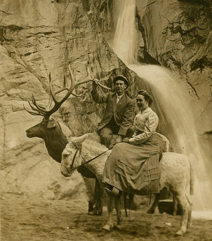 Strange Couple on Taxidermy Deer and Donkey Under Waterfall : Interesting History, Vintage Photos, Beauty Photo, Waterf Didn T, Vintage Photography, Vintage Albums, Bw Photo, Old Photo, Ears Photography
