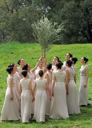 Olympia tree