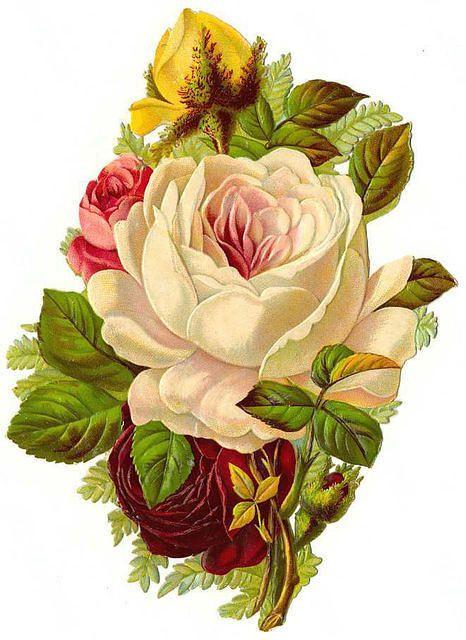 Flowers194