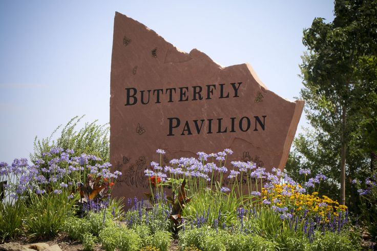 Butterfly Pavillion - This is the nation's first stand alone non-profit invertebrate zoo. Watch as your children learn about the many different invertebrates from around the globe. #denver #educationalactivities