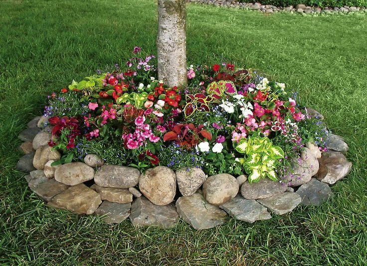 20 best ideas about rock flower beds on pinterest for Best plants for front flower bed