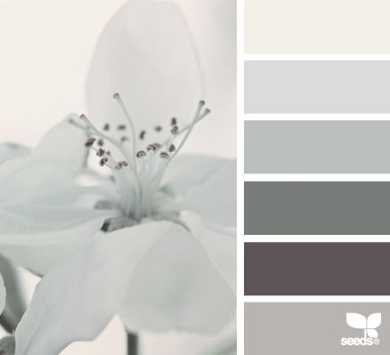 flora tones color palette from Design Seeds