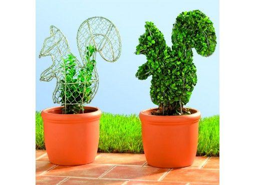 The 25+ best Grillage jardin ideas on Pinterest | Grillage vert ...