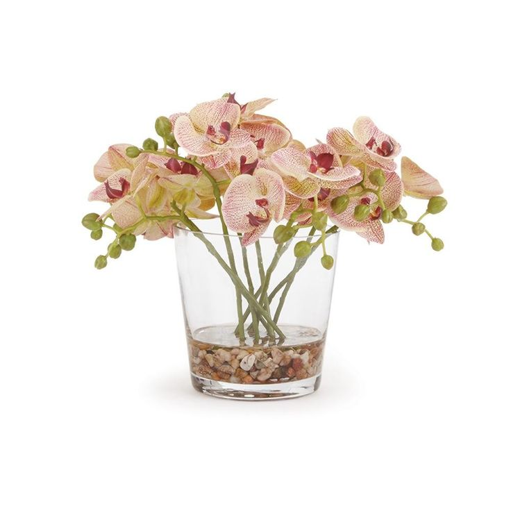 8.5'' Phalaenopsis Flower Arrangement in Clear Vase