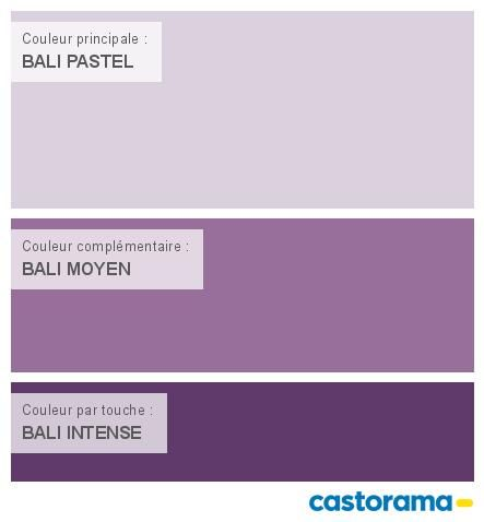 M s de 1000 ideas sobre nuancier tollens en pinterest for Bombe de peinture castorama