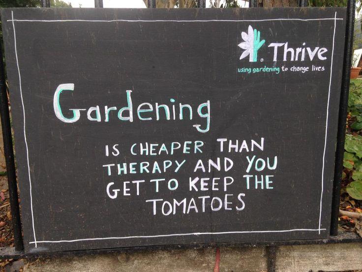 Nice one Thrive! #OT
