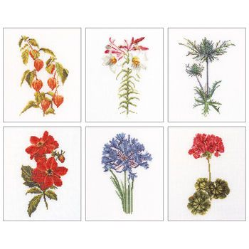 Thea Gouverneur counted-cross-stitch Kit Floral Studies 2 On Linen