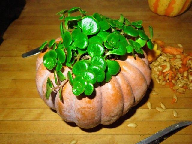 Stadtkonfetti - Der Herbst ist da und Halloween steht vor der Tür: Unser Basteltipp Nr. 1