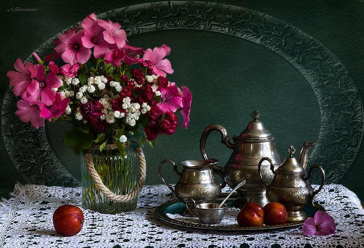 Фотография фотографа Elizaveta  Shavardina - Красная слива