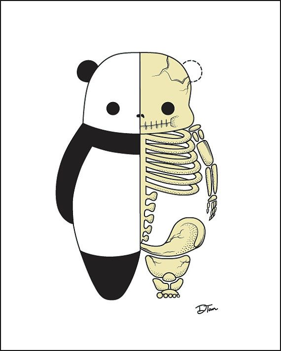 Hey, I found this really awesome Etsy listing at https://www.etsy.com/listing/115482420/on-sale-8-x-10-skeleton-panda-art-print