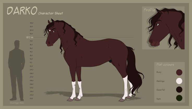 Darko - Character Sheet by Wild-Hearts.deviantart.com on @DeviantArt