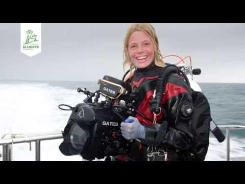 Samenvatting van Blijdorp College 'The making of Holland, Natuur in de Delta' - YouTube