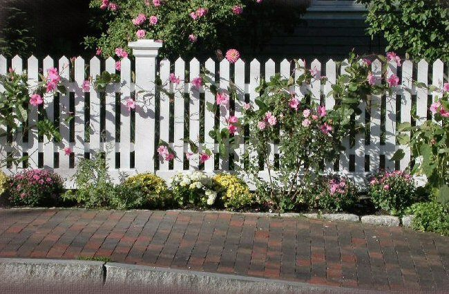 white picket fence - Yahoo Image Search Results