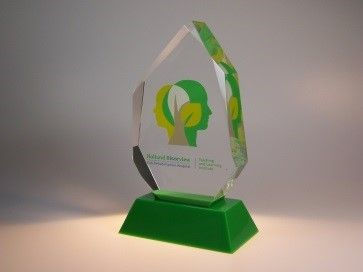 Recognition Awards Ideas – Lucite Embedment