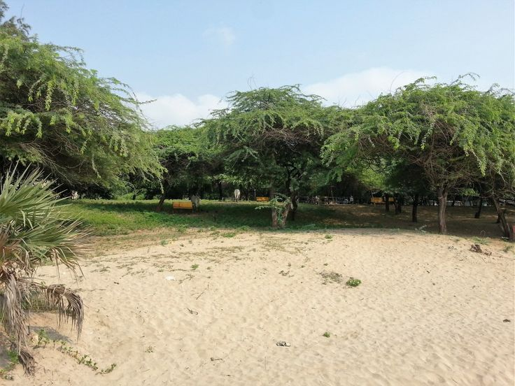 Ghoghla Beach - the largest one in Diu