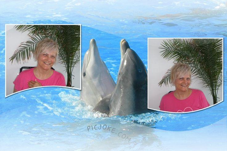 já a delfíni