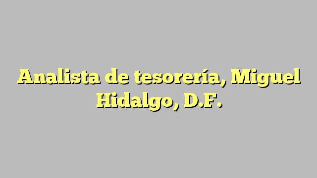 Analista de tesorería, Miguel Hidalgo, D.F.