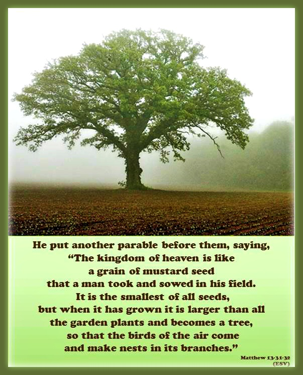 "He put another parable before them, saying, ""The kingdom of heaven is like a grain of mustard seed that a man took and sowed in his field. It is the smallest of all seeds, but when it has grown it is larger than all the garden plants and becomes a tree, so that the birds of the air come and make nests in its branches."" Matthew 13:31-32 Parables of Jesus: Mustard Seed-About the Kingdom of Heaven"