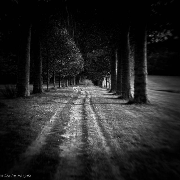 """Résultat de recherche d'images pour """"paysage hanté"""""""