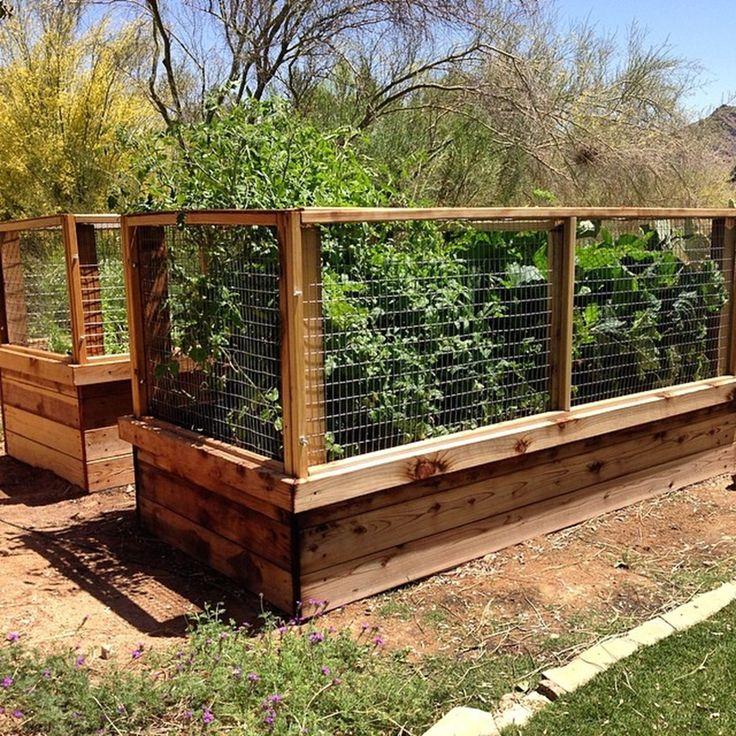 35 Advantageous Small Vegetable Garden Ideas For Your: Organic Vegetable Gardens Phoenix AZ Arizona